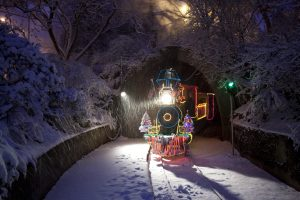 The steam train emerges from a tunnel duing ZooLights at the Oregon Zoo. © Oregon Zoo / photo by Michael Durham