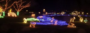 ZooLights at the Oregon Zoo. © Oregon Zoo / photo by Michael Durham