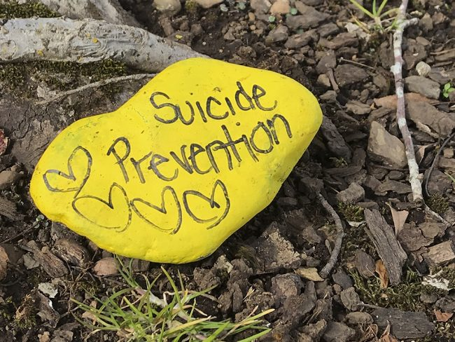 Rocks giving supportive messages around campus. (Jeni Banceu/The Indy)
