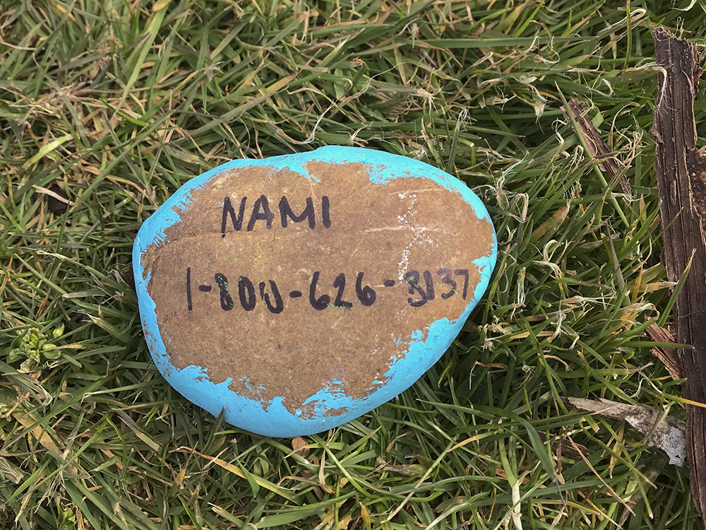 A rock giving the number of the suicide prevention hotline. (Jeni Banceu/The Indy)